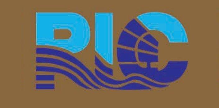 RIC в России
